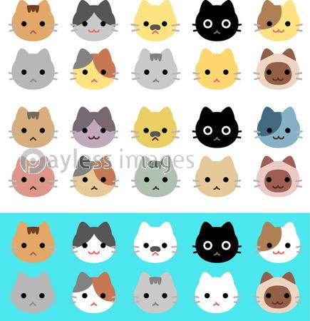 猫の顔のアイコンセットの写真 イラスト素材 Xf3975323106