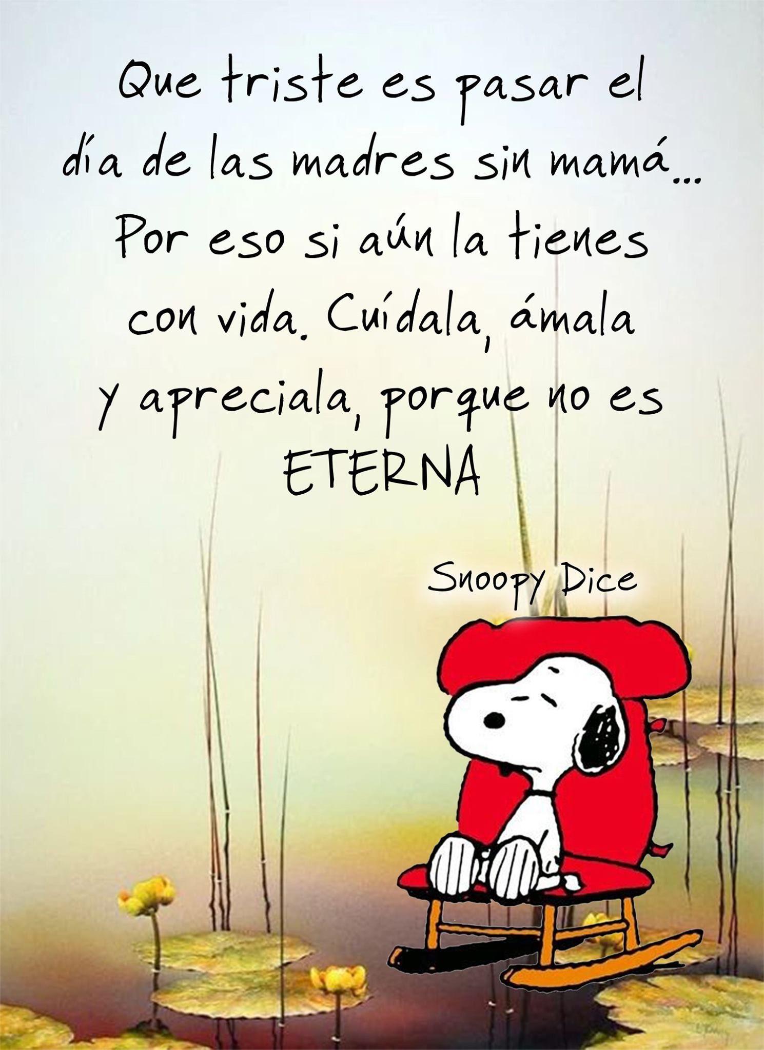 Pin De Maria Toro En Amor Dia De Las Madres Un Dia Snoopy