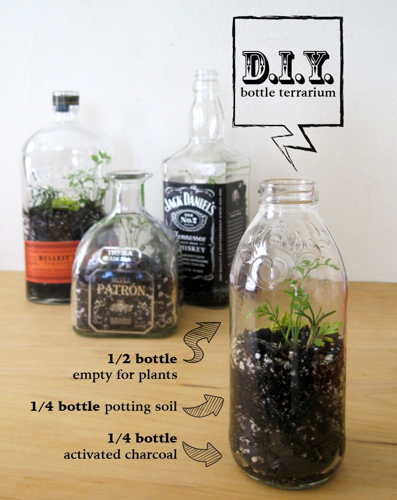We've all seen photos of a beautiful terrarium with its own miniature ecosystem in a bottle -- I decided to try making my own. This quick and simple DIY project turned out great and took almost no time at all. First, find a bottle (or a few). Look for interesting shapes and brands, but make... #Bottle, #DIY, #Terrarium, #Upcycled