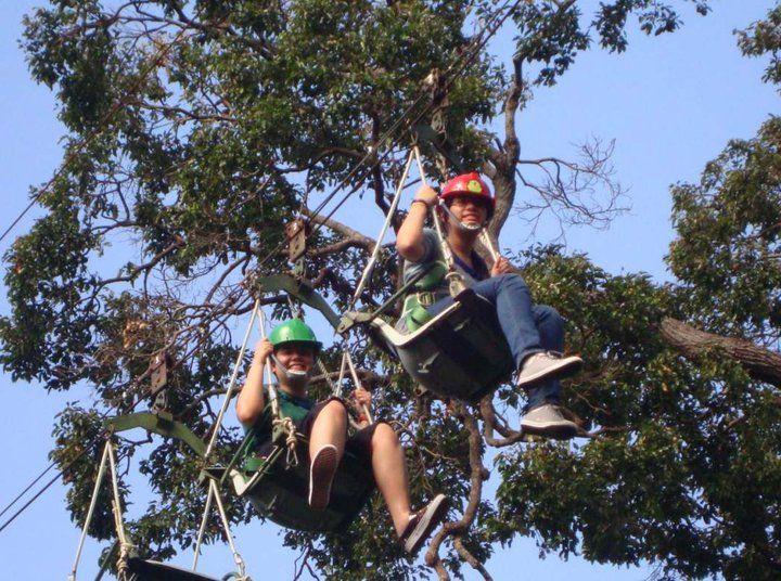Tree Top, Clark, Philippines