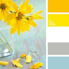 Картинки по запросу сочетания цветов | Цветовые палитры ...