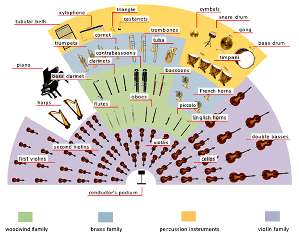 Orchestra seating chart also new york city  the arts rh pinterest