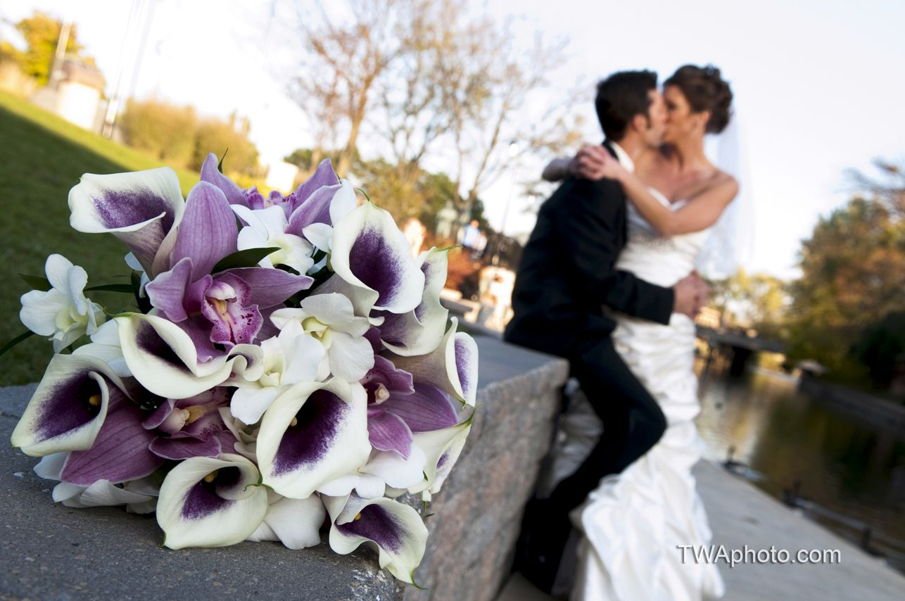 Orchid bouquet with purple accents aphoto