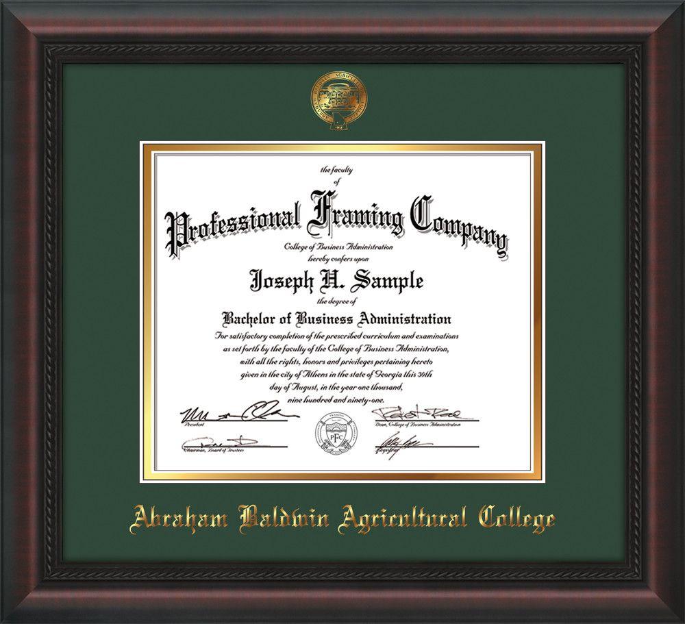 Abraham Baldwin Agricultural College Diploma Frame - Mahogany Braid ...