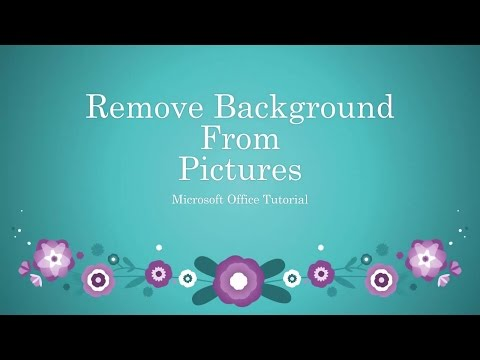 How To Remove Background From Pictures in Word / Excel