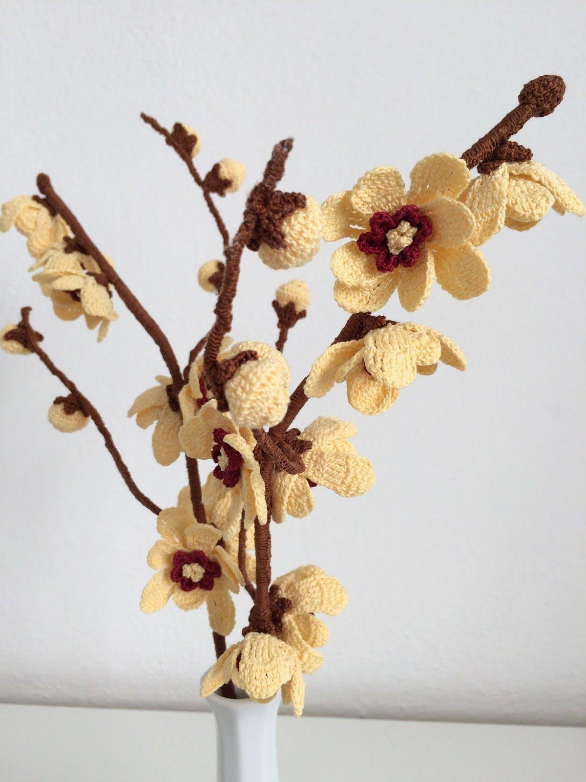 Calicanto Fiore D Inverno anche nel freddo clima invernale non è raro trovare intense