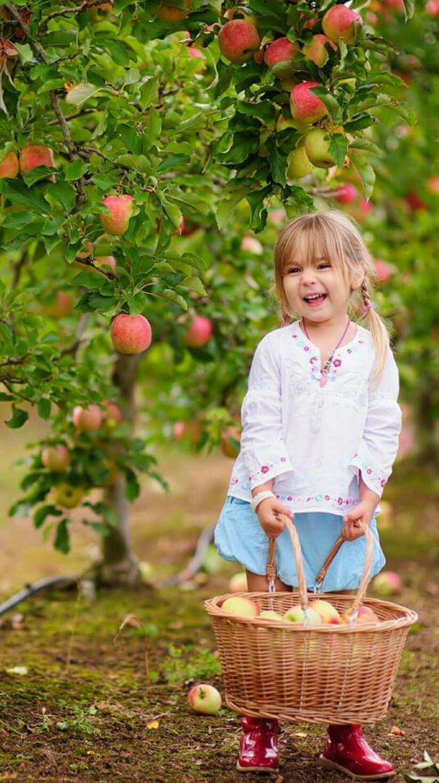 Красивые детей с яблоками 66