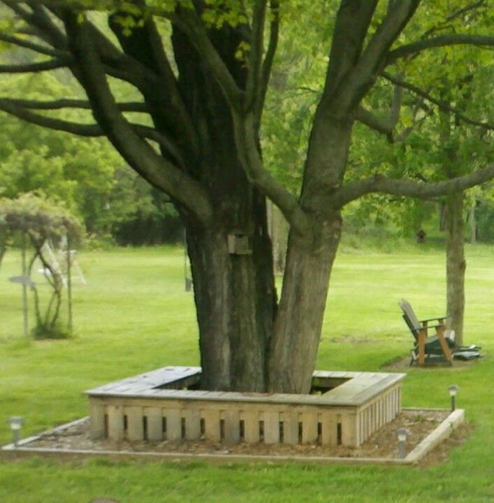 Wanted A Bench Around This Tree For Extra Seating At Son 39 S Birthday Parties This Is What My