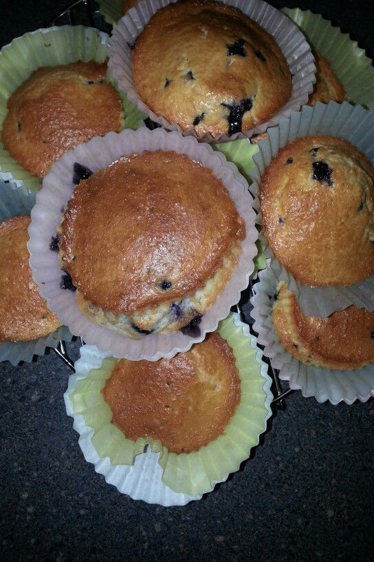 Blueberry Muffins Nuwave Oven Nuwave Oven Recipes Recipes