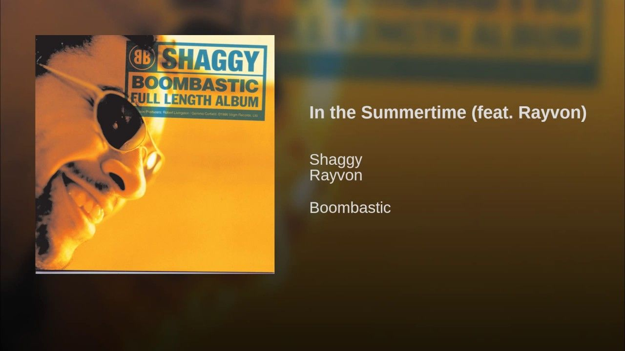 In The Summertime Feat Rayvon Summer Time Mr Boombastic Summertime