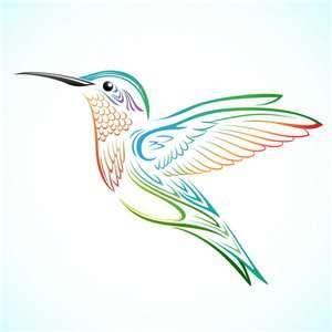 Kolibri Kolibri Vorlagen Kolibri Vorlagen