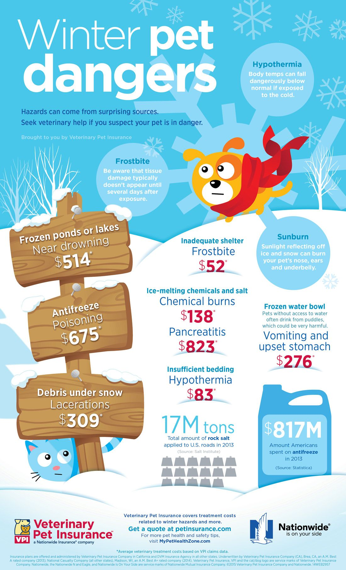 Winter Pet Dangers Infographic Protect Pets During Cold