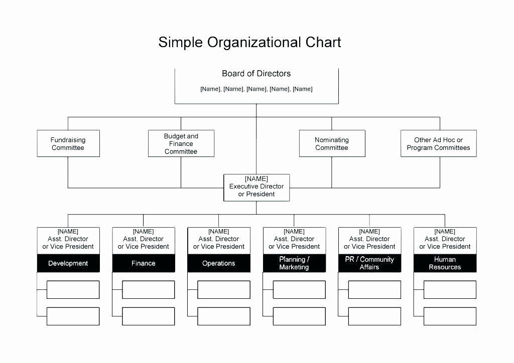 Non Profit Organizational Chart Template Unique Template Non Profit Organization Chart Template Sample In 2020 Organizational Chart Excel Templates Business Chart