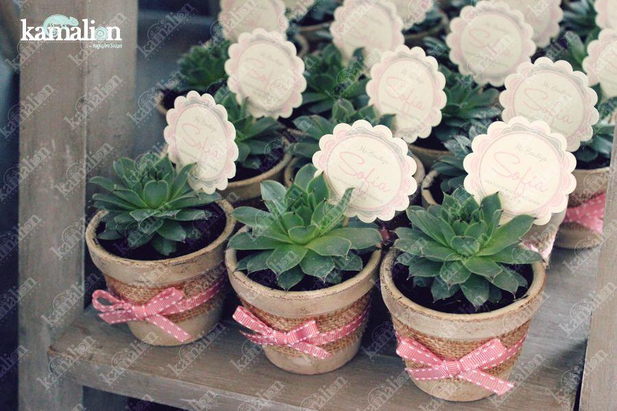 Recuerdos De Bautizo Con Cactus.Recuerdos Giveaways Detalles Personalizados Vintage