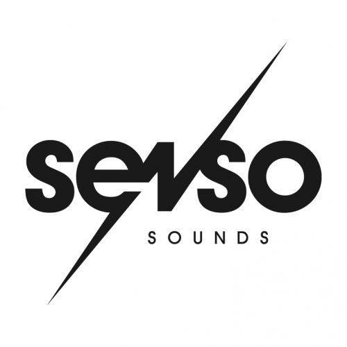 Senso Sounds Releases & Artists on Beatport (с изображениями)