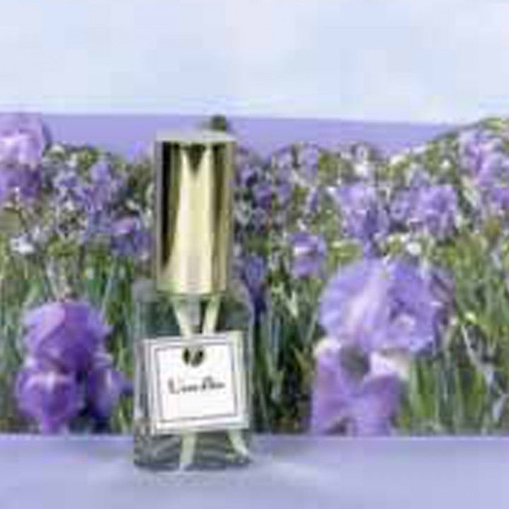 L Eau D Iris Dsh Perfumes Blue Iris Flowers Perfume Flower Perfume