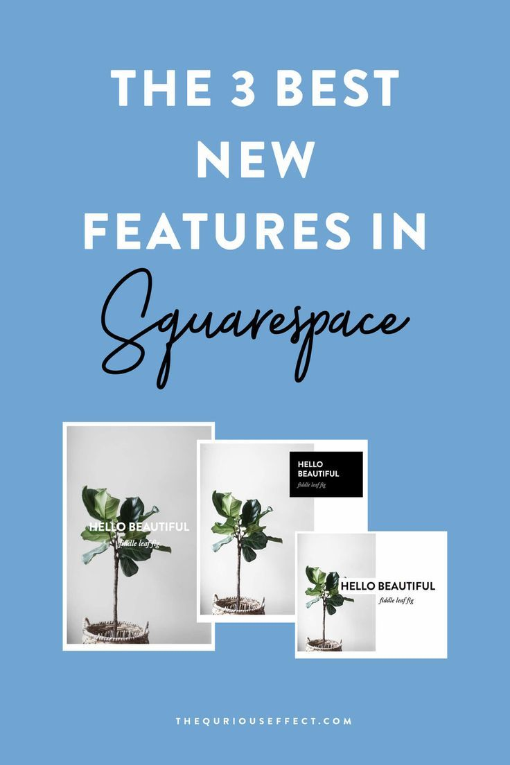 The 3 Best New Squarespace Features You Need to Try