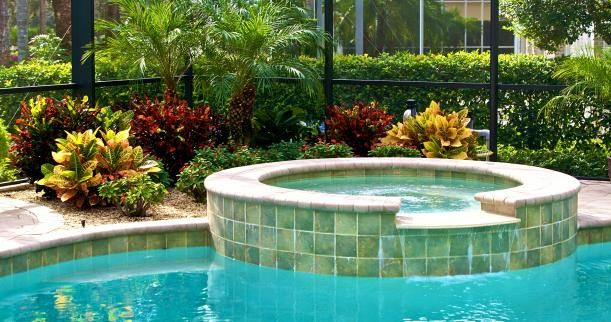 plants around pools simple backyard extras to discover your poolside paradise - Garden Ideas Around Swimming Pools