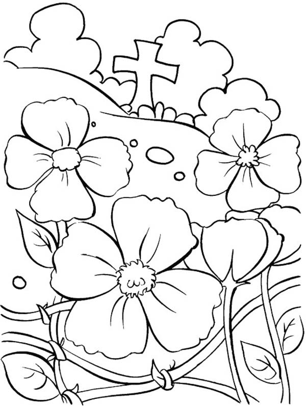 November Remembrance Day Coloring Pages Coloring Sun Memorial Day Coloring Pages Remembrance Day Poppy Remembrance Day Activities