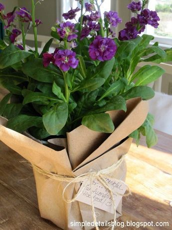 Are you gifting a potted plant? Simply wrap it in brown paper and twine. A great DIY gift wrap idea.