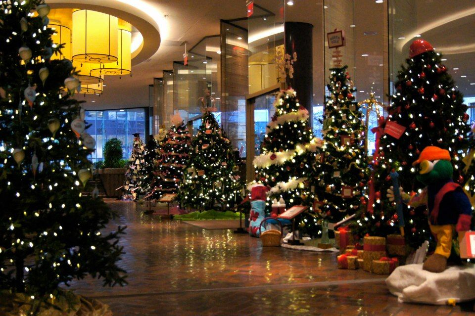 Welcome To Christmas Tree Lane Holiday Decor Christmas Display Christmas Tree Lighting