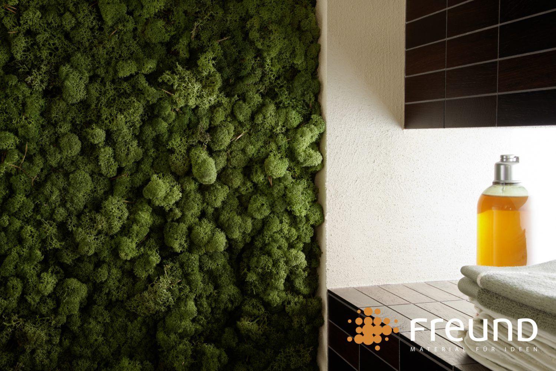 Evergreen Das Grune Badezimmer Musgo Jardineria Verde