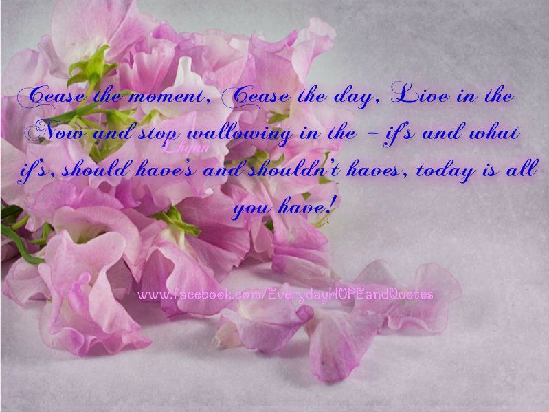 Cease The Moment Cease The Day Cease The Day In This Moment Beautiful Quotes