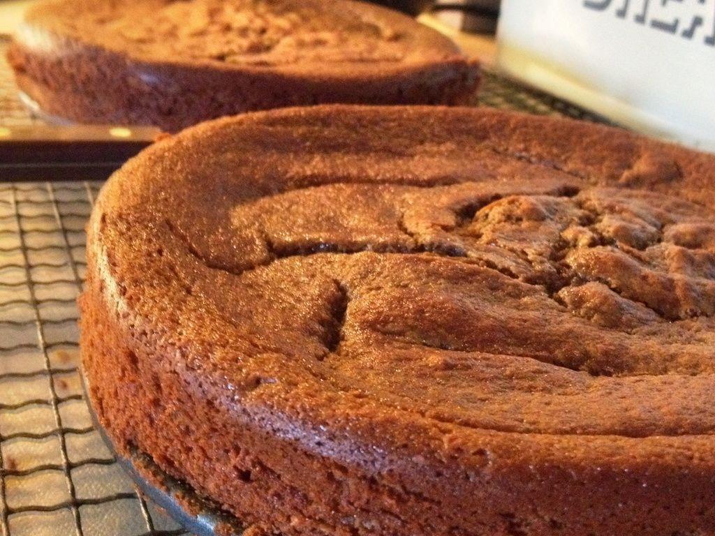 Nigella Lawson Flourless Chocolate Orange Cake Recipe