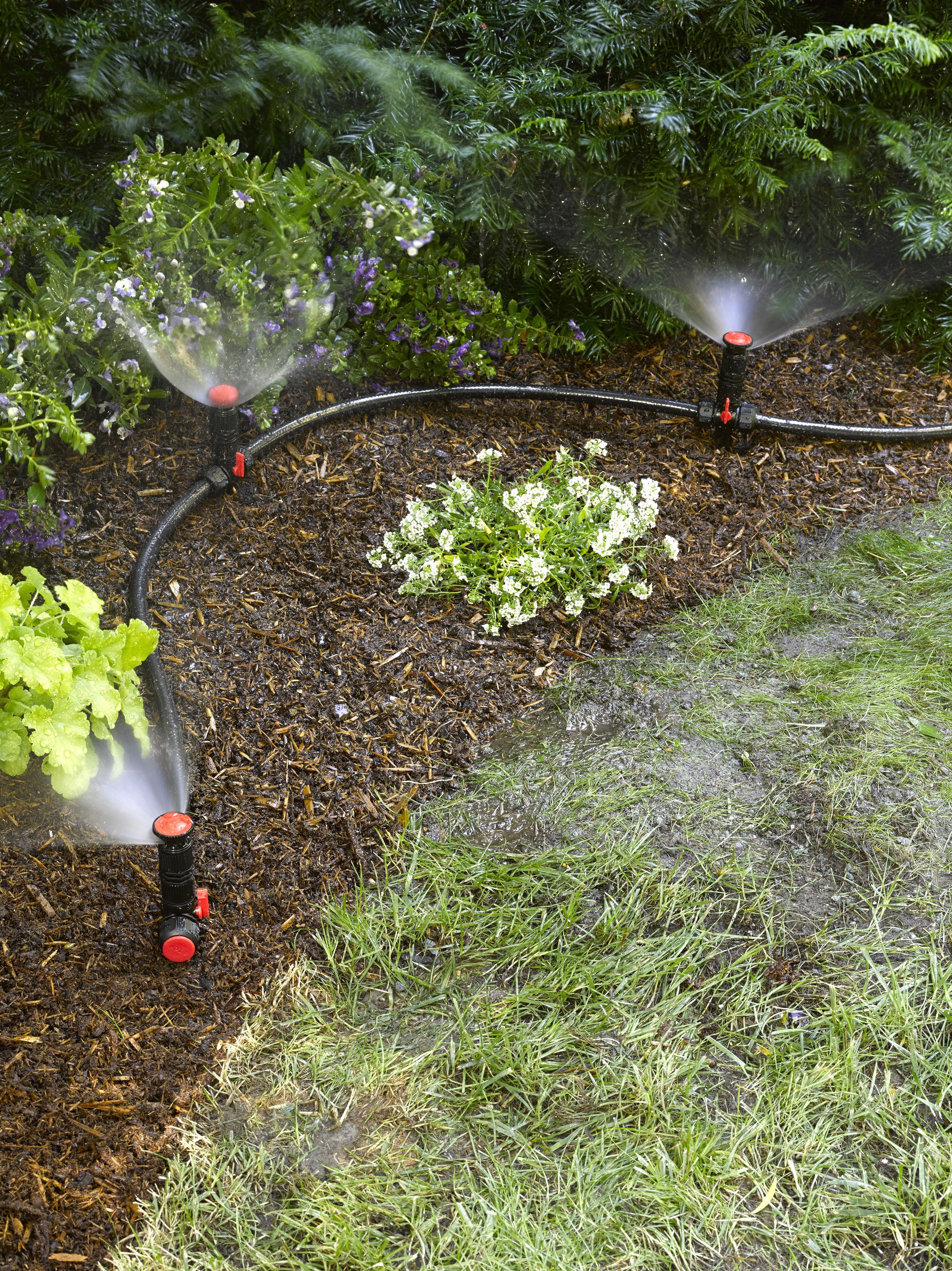 Above Ground Irrigation Systems For Landscaping Diy Sprinkler