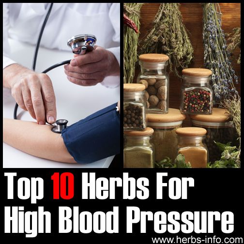 herbs for high blood pressure pdf