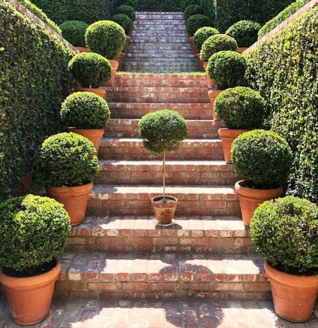 Pin On Landscape Gardening