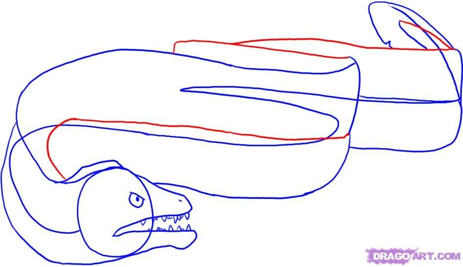 How To Draw An Eel By Dawn With Images Online Drawing