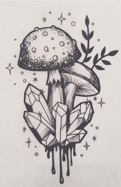 fungus drawing | Tumblr