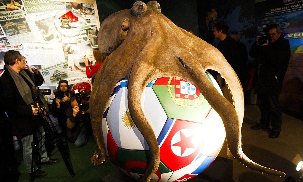 He Ll Always Be On The Ball Now Paul The Octopus Receives Permanent Memorial In Honour Of World Cup Predictions Paul The Octopus Giants Football World Cup