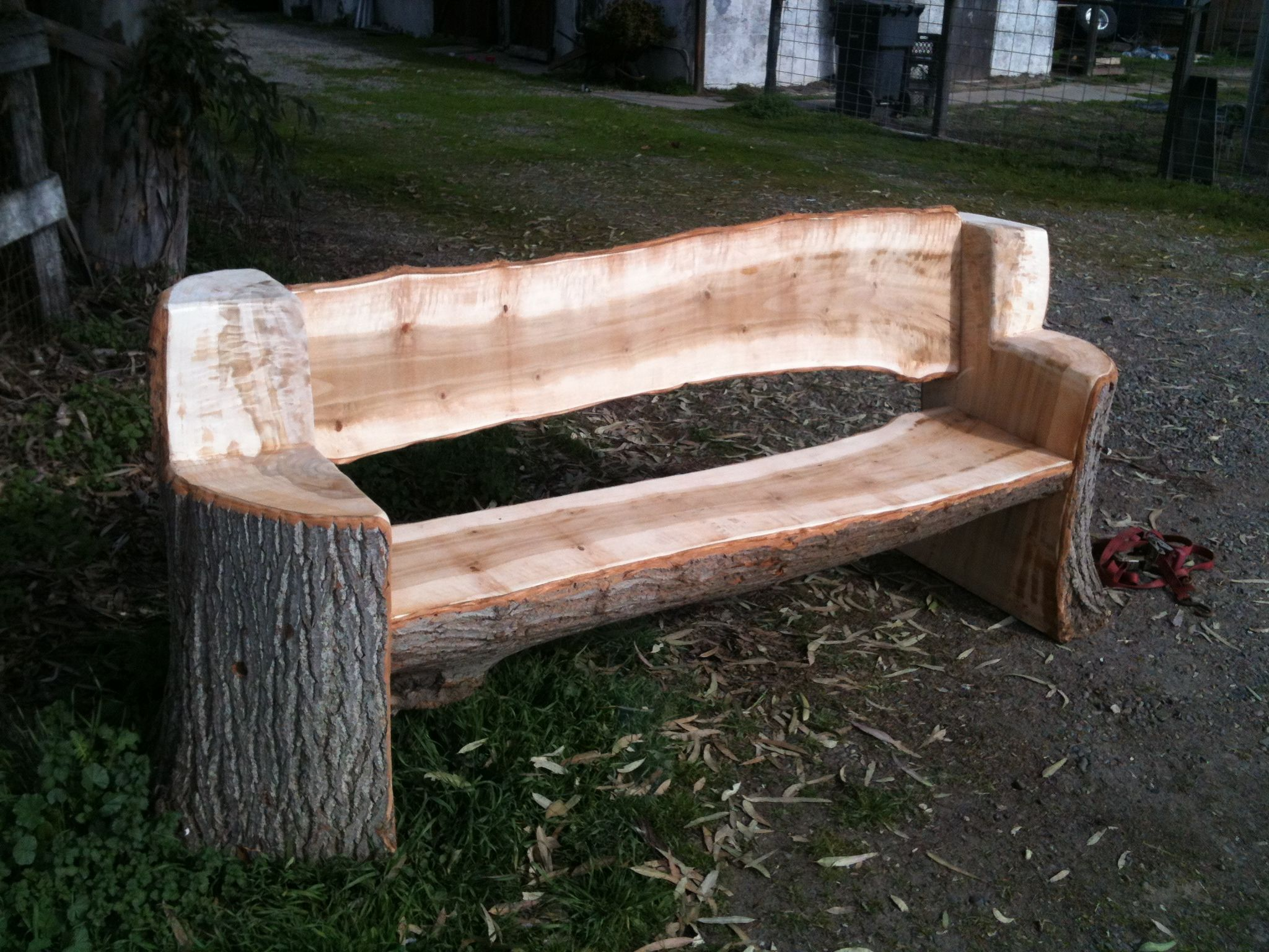this bench was made from and urban poplar tree all the