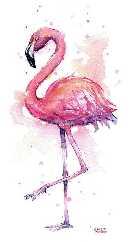 Pink Flamingo Watercolor Tropical Bird Art Print by Olga Shvartsur #watercolorart