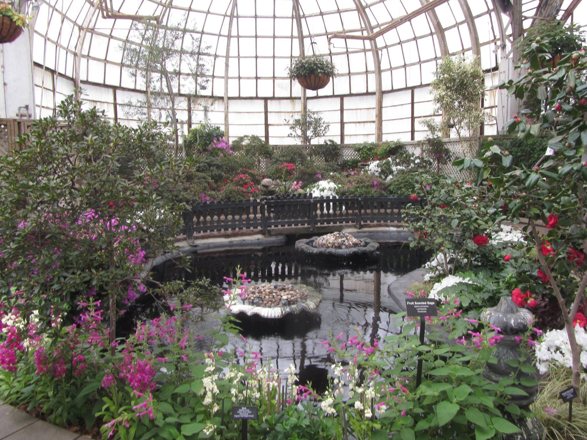 The gorgeous Lincoln Park Conservatory, open year-round.