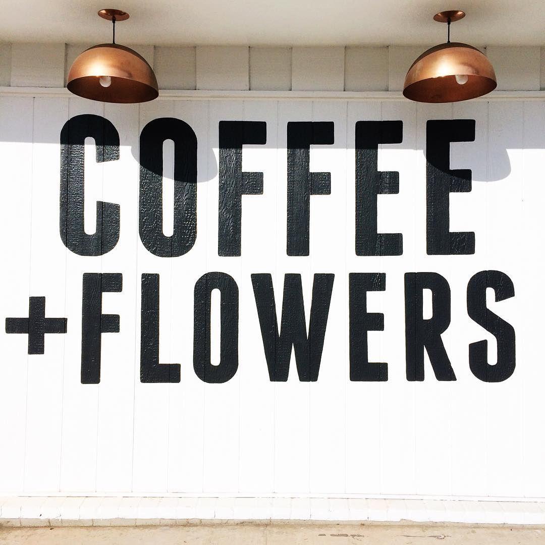 we live on coffee flowers