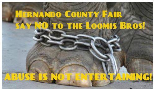 Petition · Hernando County Fair Board Hernando County Fair Board - business petition