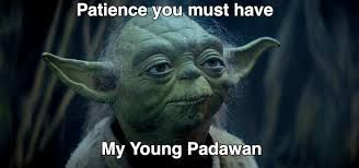 Image result for yoda patience gif