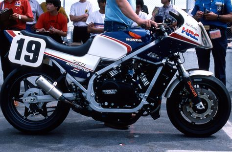 1984 Honda VF750F Interceptor at Daytona. None other than Fast Freddy's, enough said...