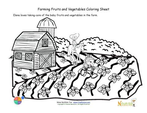 Printable - Taking Care of the Newly Planted Seeds Coloring Sheet - copy coloring pages of vegetables