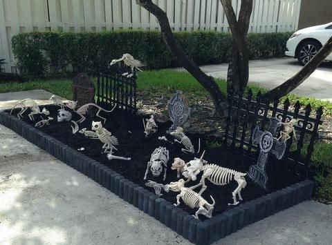 Halloween Skeleton Human and Animal Bones Decoration in 2018