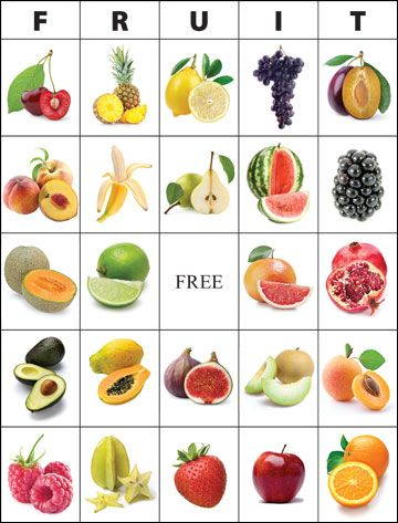 Bingo Card Science Bingo Card Maker Bingo Bingo Card Template