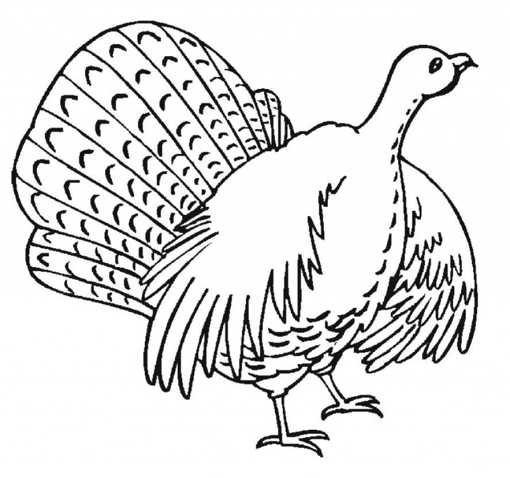 Free Thanksgiving Coloring Pages for Kids Free