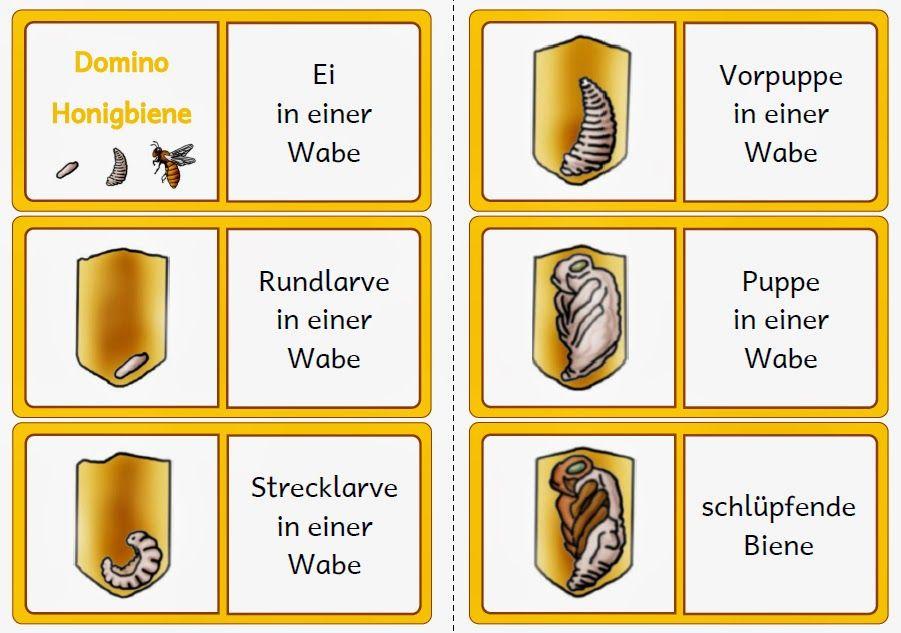 biene kindergarten - Google-Suche | Biene | Pinterest | Bienen ...
