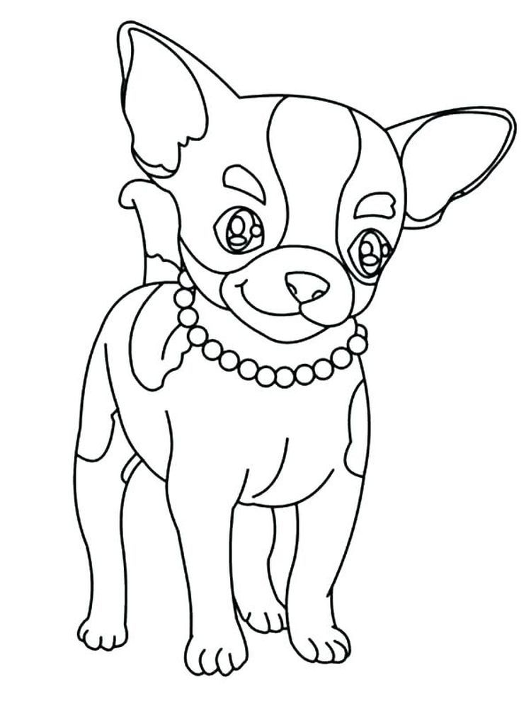 Beverly Hills Chihuahua Coloring Pages Chihuahua Is Dog Smallest Breed It Is Named Originally From Puppy Coloring Pages Dog Coloring Page Cute Coloring Pages