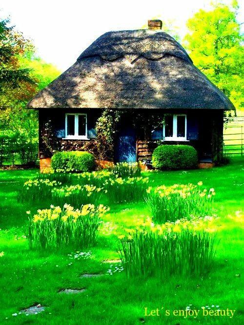 Moja záhrada