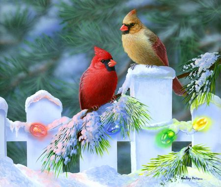 Christmas Cardinals Images.Pin On Painting Christmas Ideas