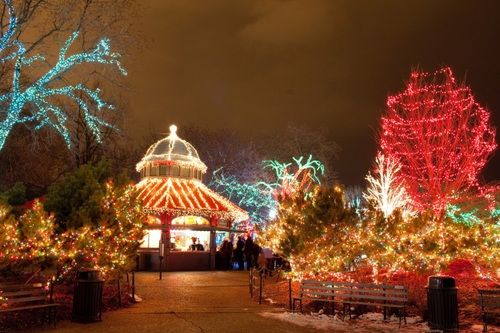 Lincoln Park Zoo S Annual Zoolights Festival Chicago Holiday Best Places To Camp Lincoln Park Zoo